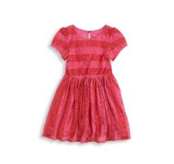 The Children's Place Lace Skater Red Pink Dress Girls Clothe
